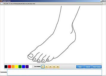 Draw on an Anatomical Outline with MediDraw